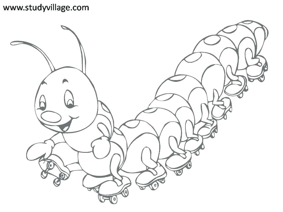 960x720 Bugs Coloring Page Coloring Pages Of Bugs Cute Insect Co Cute