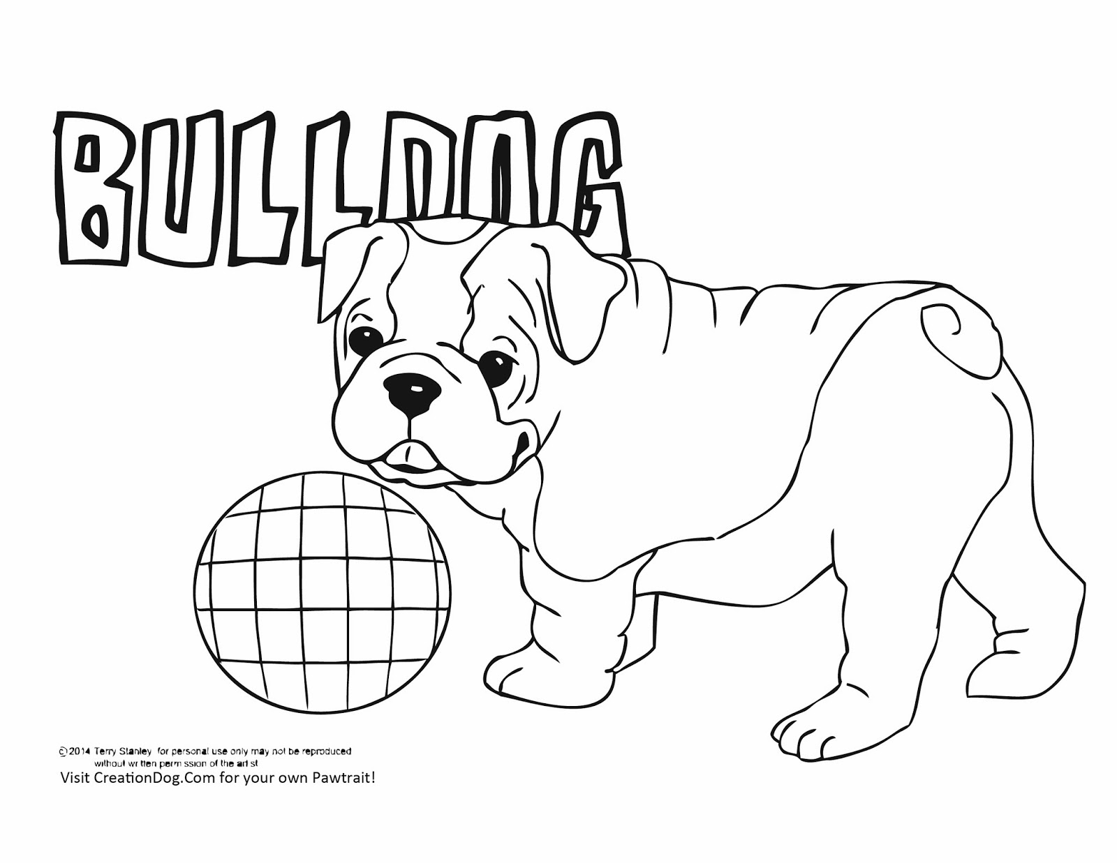 Cute Bulldog Drawing
