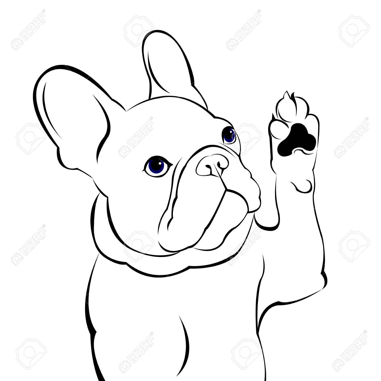 1300x1300 Dog, Vector, Breed, Cute, Pet, Animal, Bulldog, French, French