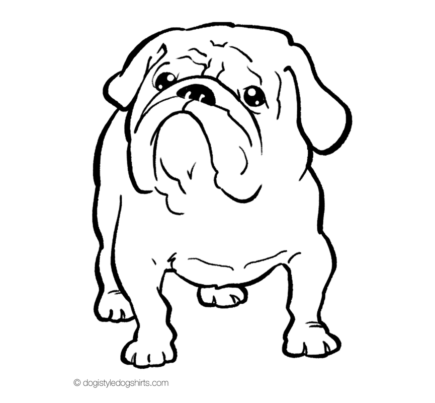 865x800 English Bulldog Coloring Pages Free