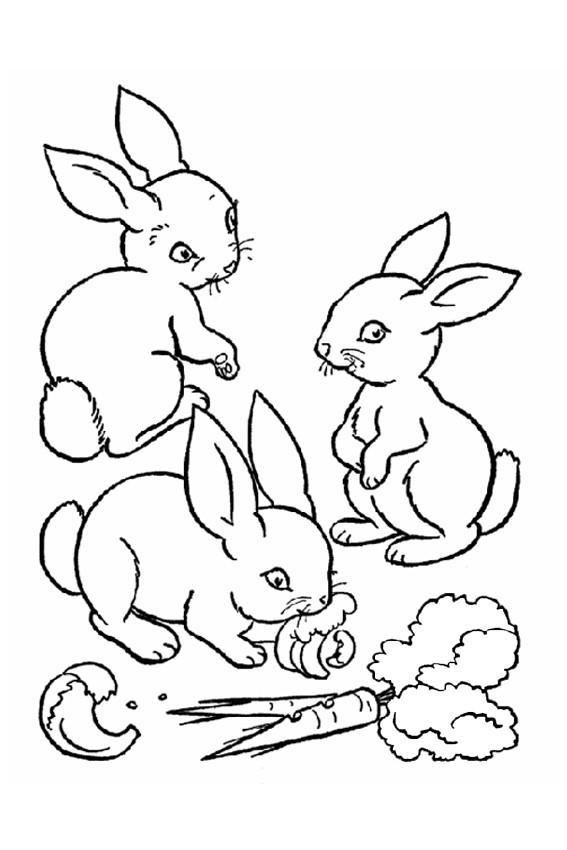 Cute Bunny Drawing at GetDrawingscom Free for personal use Cute