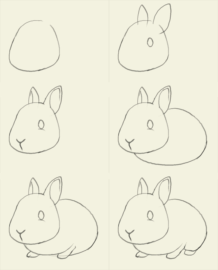 700x865 how to draw bunny