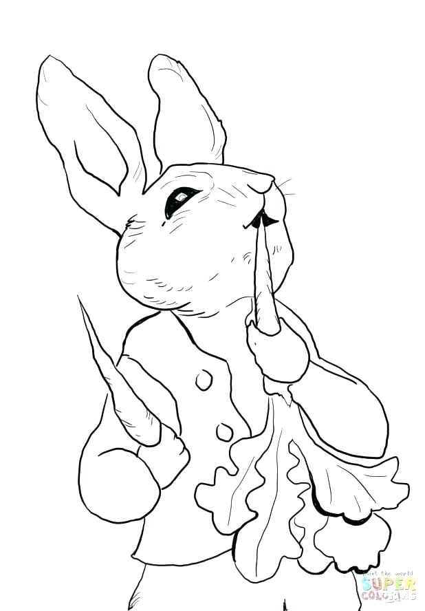 618x888 Bunny Rabbit Coloring Page Synthesis.site