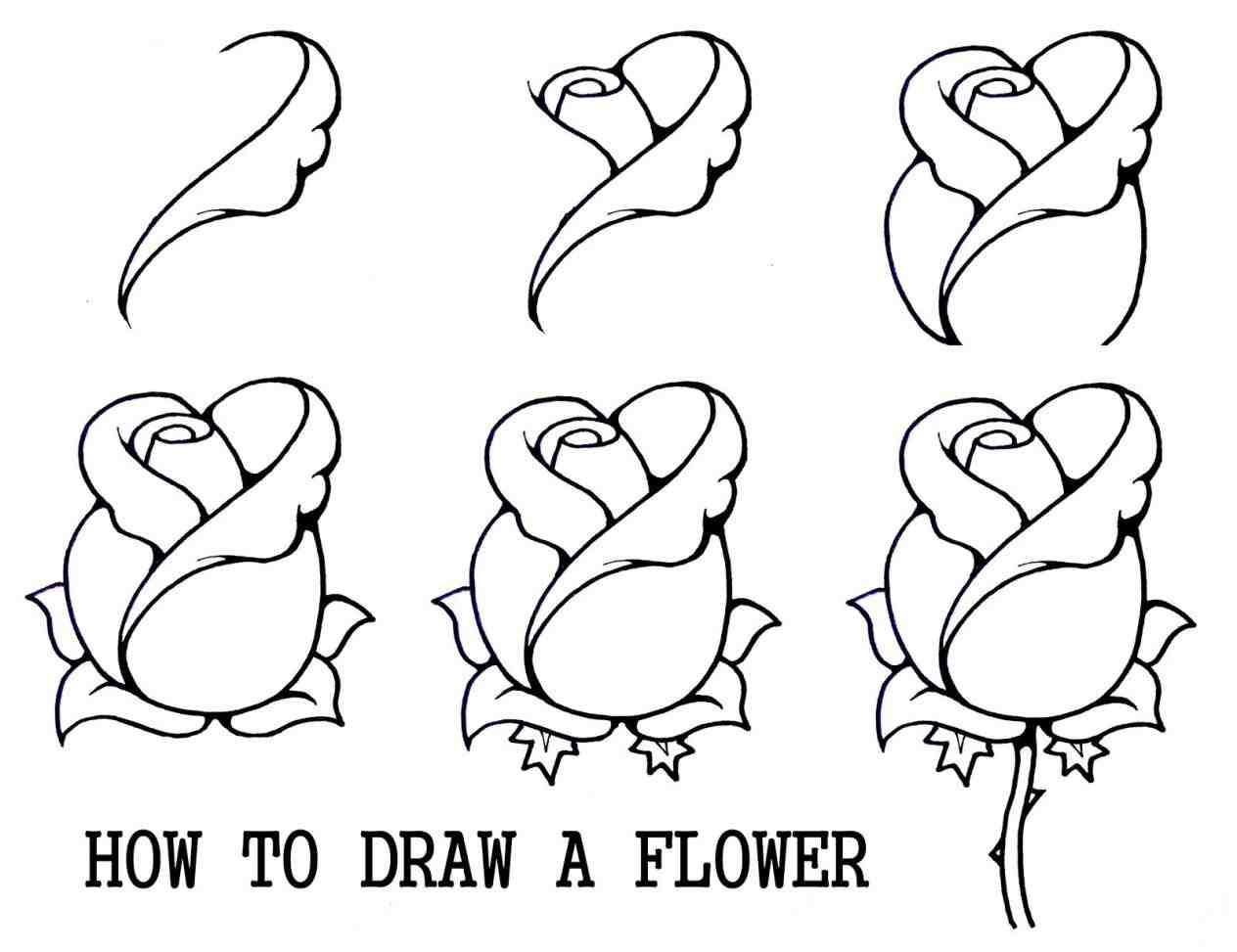1264x973 The Images Collection Of Drawings Step By Step Cartoon Characters