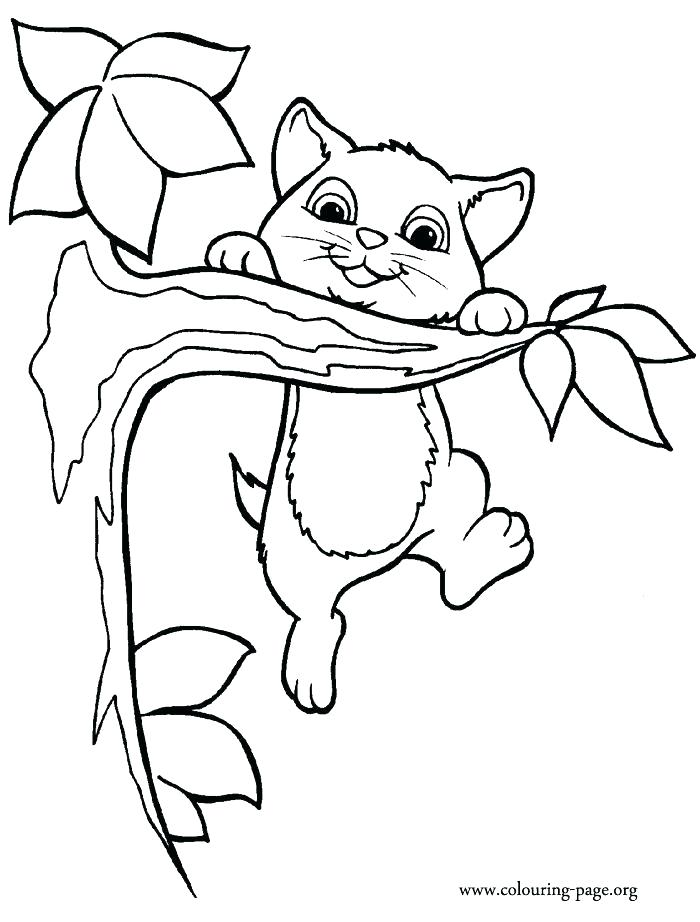 700x922 Classy Cute Kitty Coloring Pages Kids Kitten Home Cat