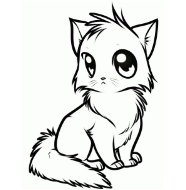 Cute Cat Face Drawing