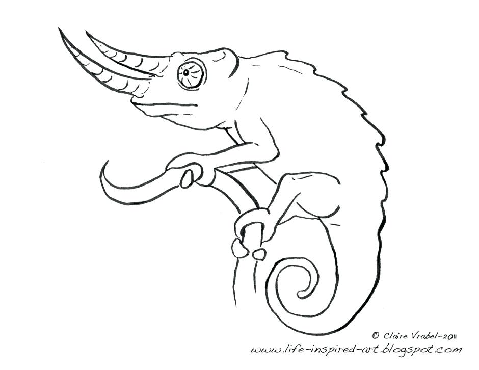 940x726 Chameleon Coloring Page Cute Chameleon Coloring Page More