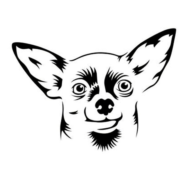 Cute Chihuahua Drawing