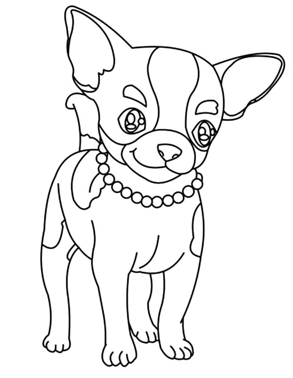 beverly hill chihuahuas coloring pages | Cute Chihuahua Drawing at GetDrawings.com | Free for ...