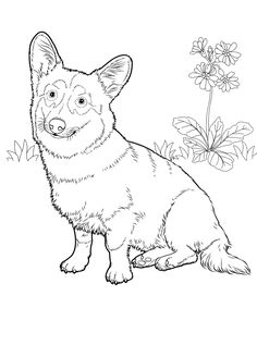 236x317 How To Draw A Corgi, Corgi, Step By Step, Pets, Animals, Free