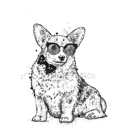 450x450 Pembroke Welsh Corgi Stock Vectors, Royalty Free Pembroke Welsh