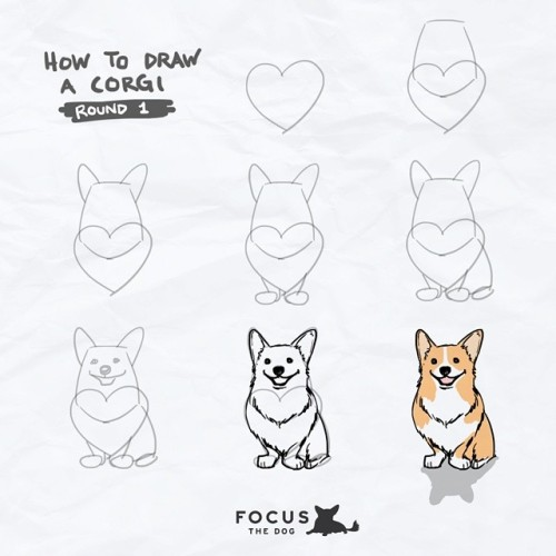 500x500 Drawing Corgi How To Corgi Nation Corgi Love Corgination