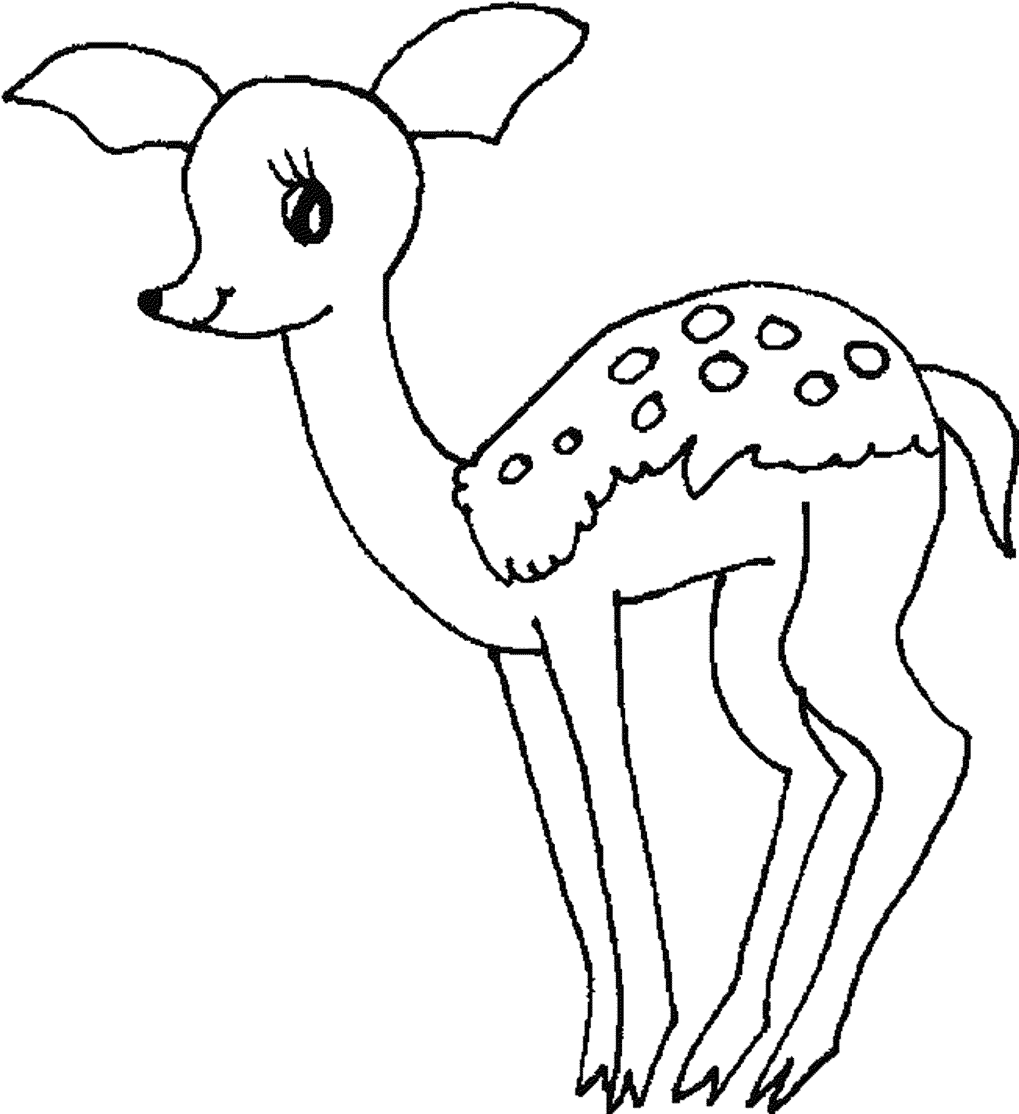 2000x2187 Baby Deer Coloring Pages