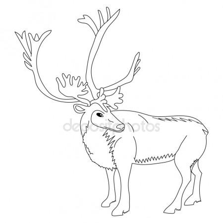 450x450 Cute Deer Reindeer Caribou Cartoon Caracter. Isolated On A White