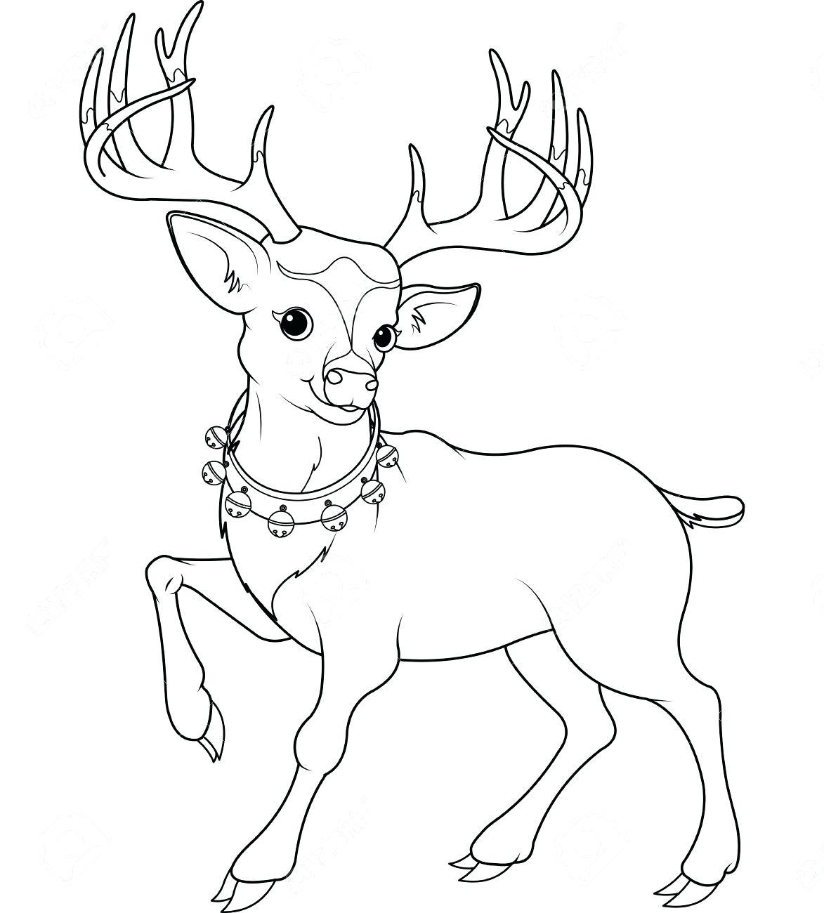 Cute Deer Drawing at GetDrawings   Free download