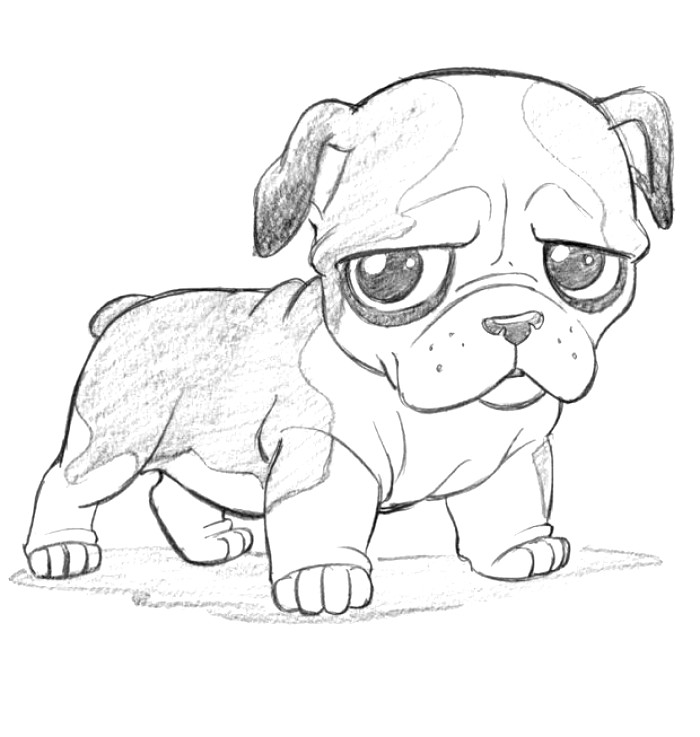 Cute Dog Anime Drawing At Getdrawings Com Free For Personal Use