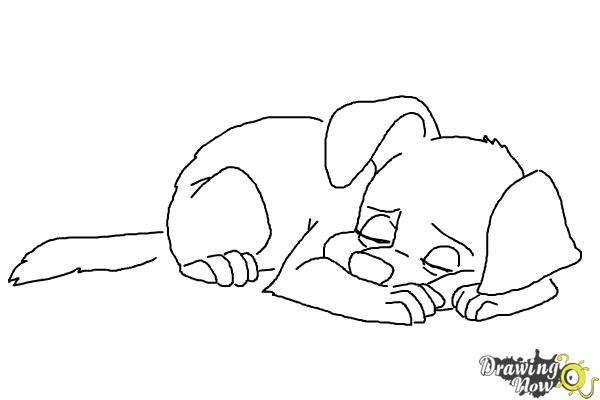 600x400 How To Draw A Sleeping Dog