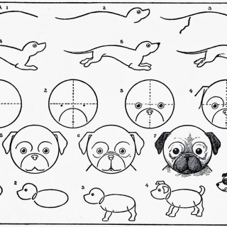320x320 Tag For Easy Cute Puppy Pictures To Draw Design Drawing Cute