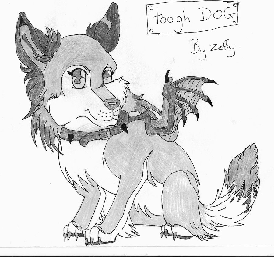 900x843 Tough Dog Or Cute By Zeffy101