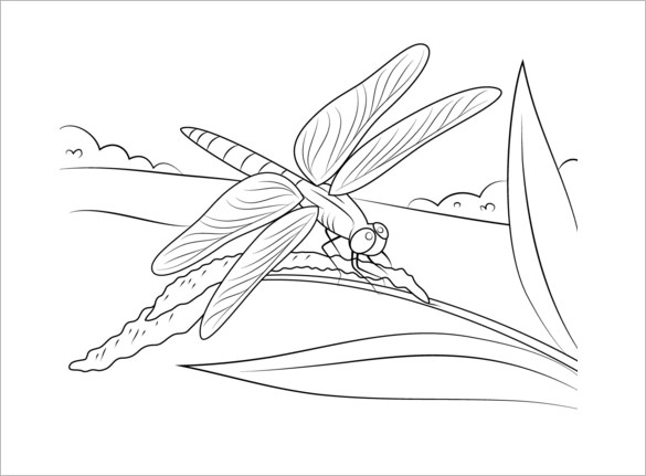 Cute Dragonfly Drawing