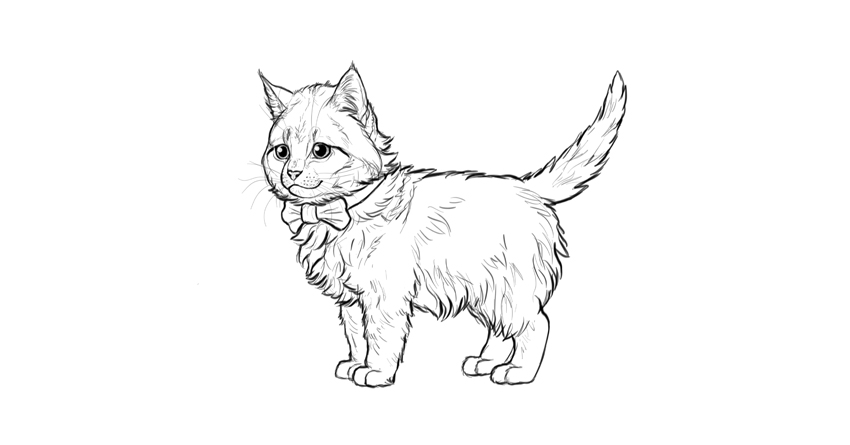850x445 How To Draw A Super Cute Kitten Step By Step