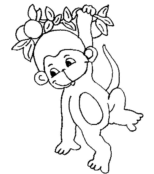 650x734 Monkey Template