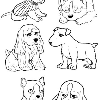 320x320 Tag For Cute Drawings Of Puppy Dog S Sketch Picture By Rssatnam