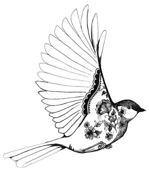 482x570 Tumblr Drawings Birds Art Bird Cute Pictures