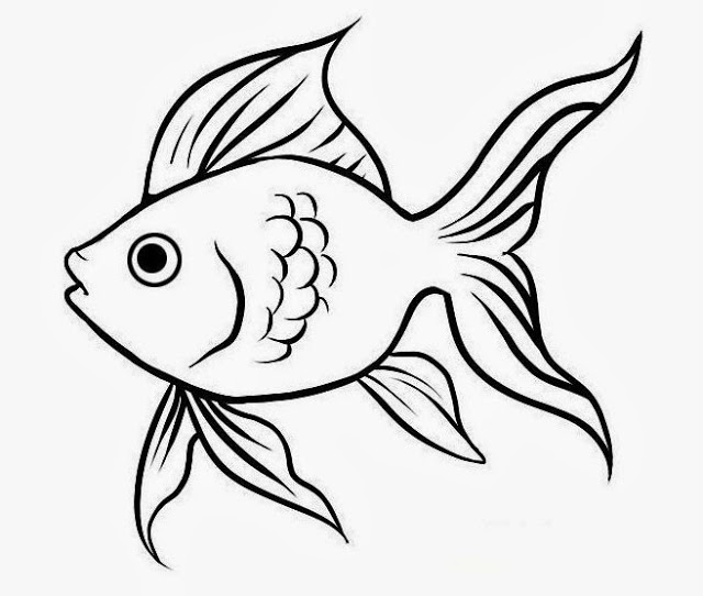 640x542 Cute Fish Wallpaper