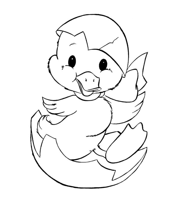 700x820 Duck Template