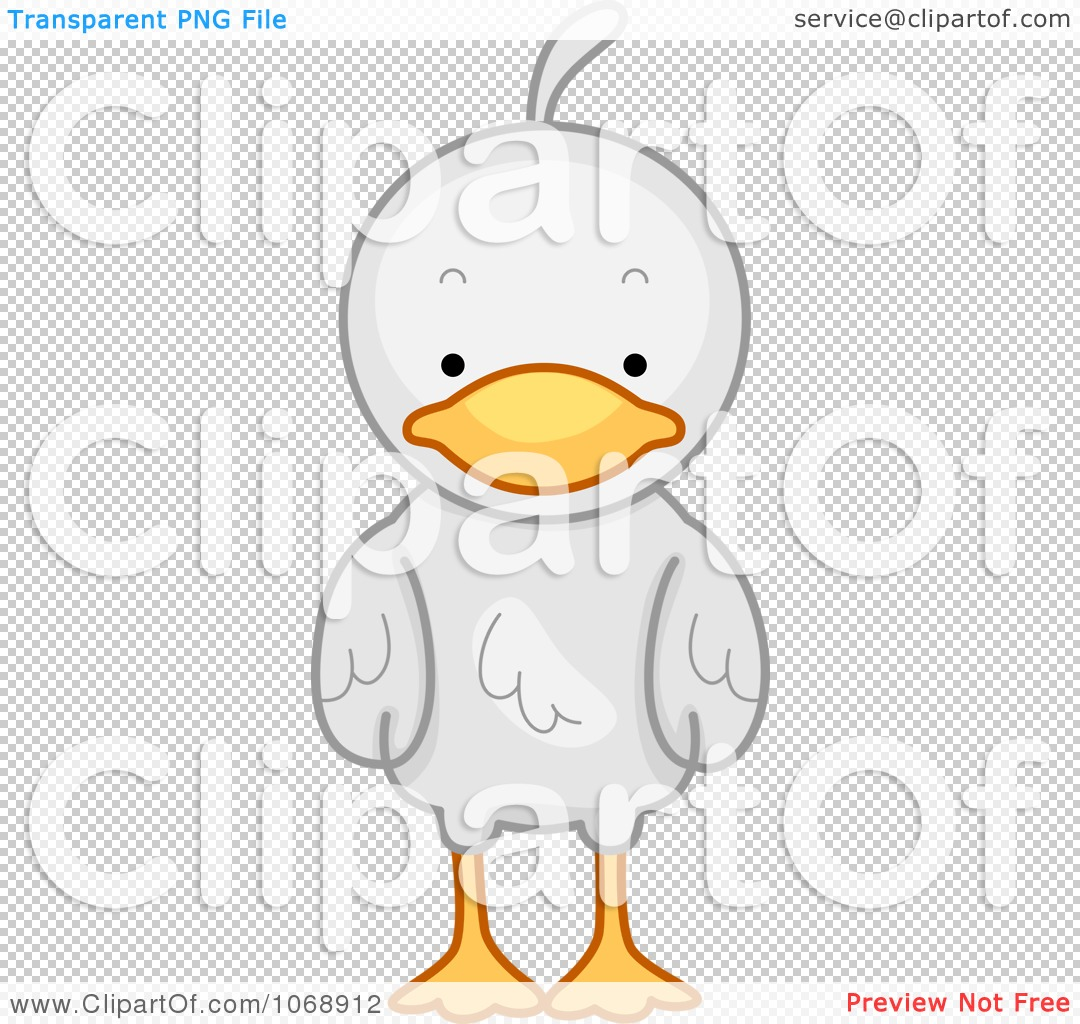 1080x1024 Clipart Cute Duck From The Front