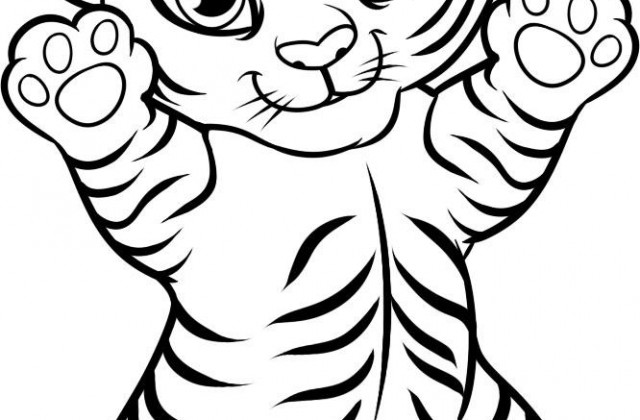 640x420 cute easy drawings of tigers fashionplaceface com drawing a tiger