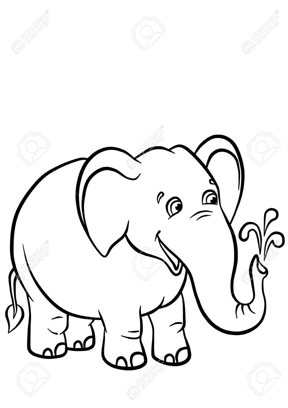 919x1300 Cute Elephant Standing And Playing With Water In The Jungle Stock