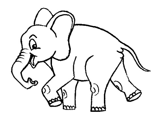 550x450 Printable Elephant Coloring Pages Me