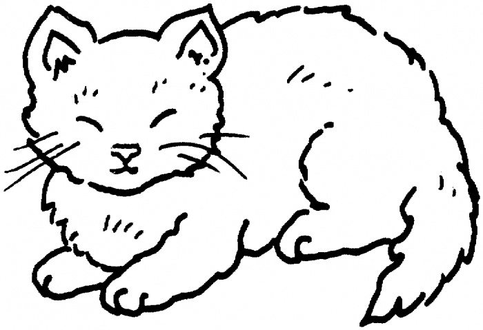 700x479 Coloring Pages For Kids Cat Fat Animal Of