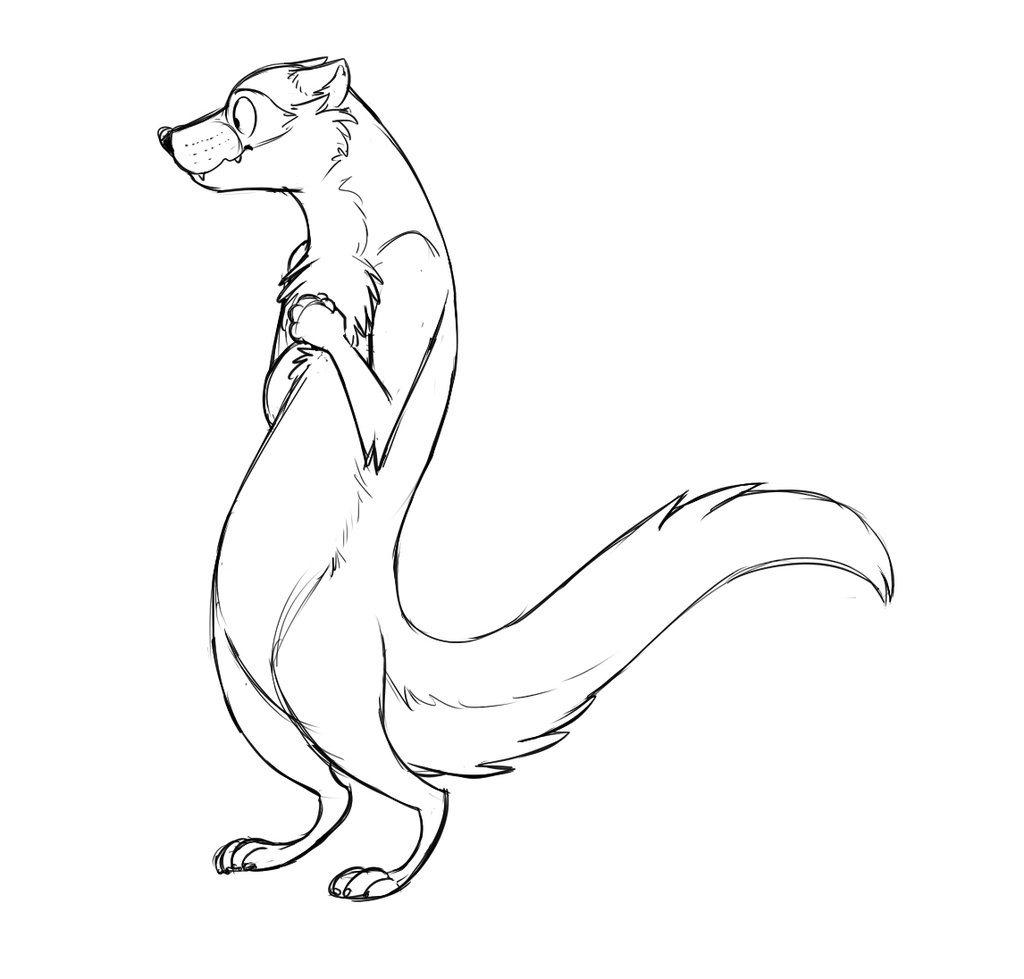 Cute Ferret Drawing At Getdrawings Com Free For Personal Use Cute