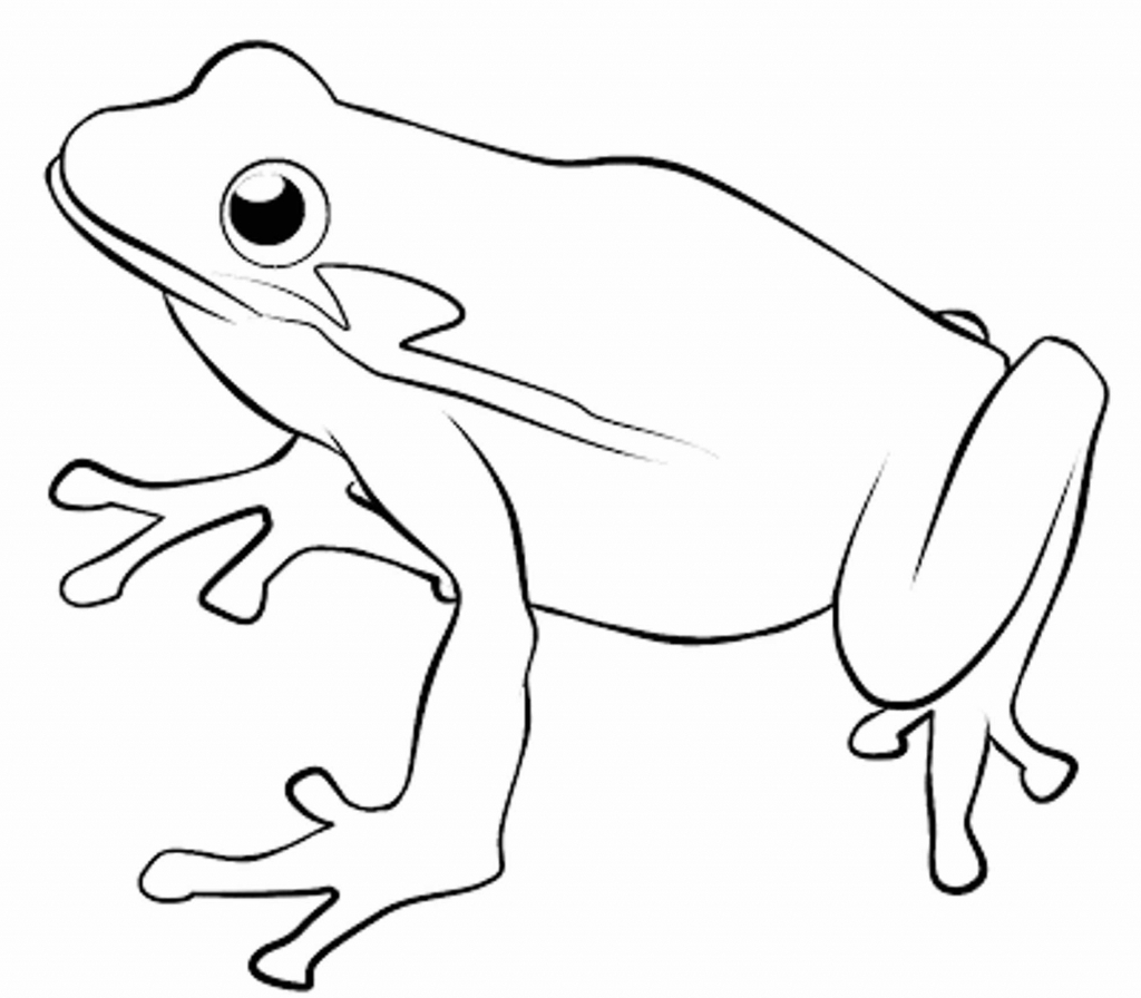 Cute Frog Drawing At Getdrawings Com Free For Personal Use Cute