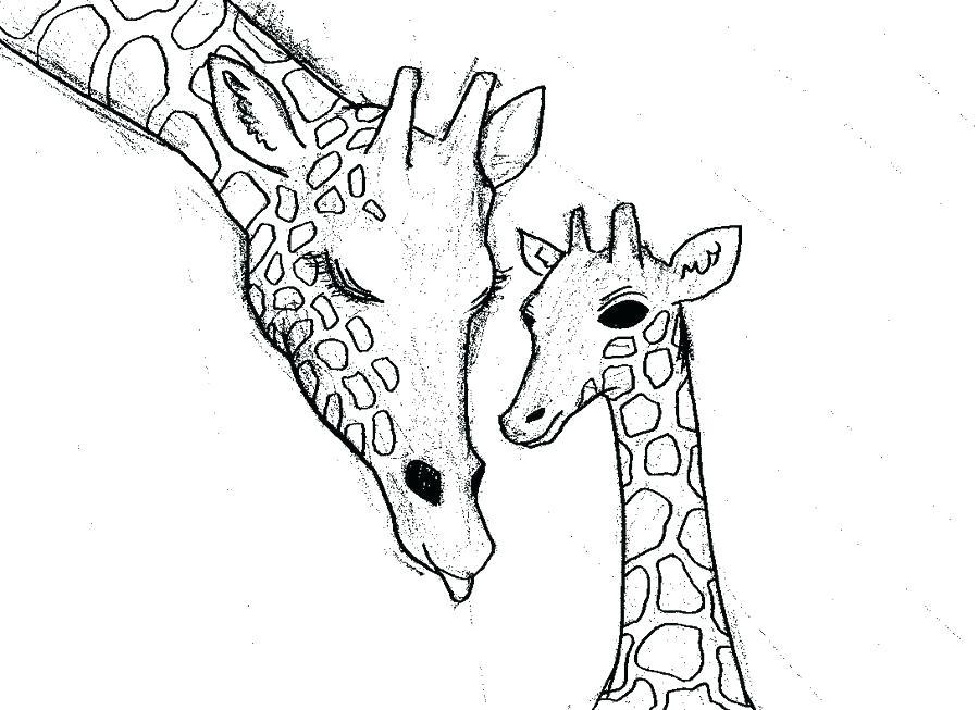 Cute Giraffe Drawing at GetDrawings.com | Free for personal use Cute ...