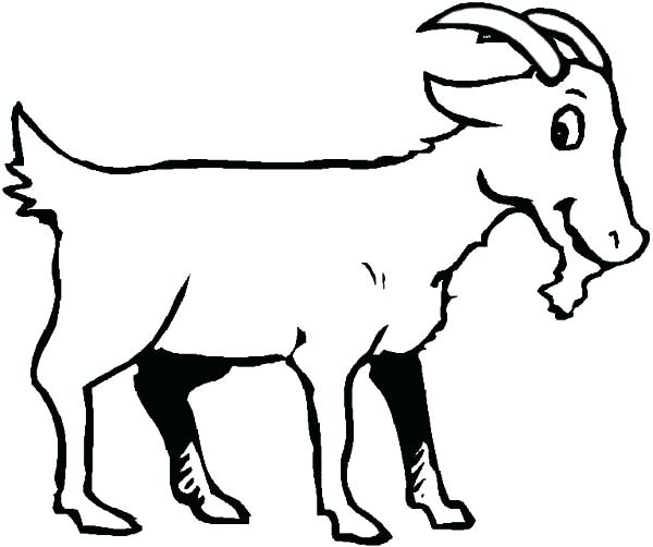 600x502 Goat For Coloring Pin Drawn Page Colori On Coloring Pages Farm