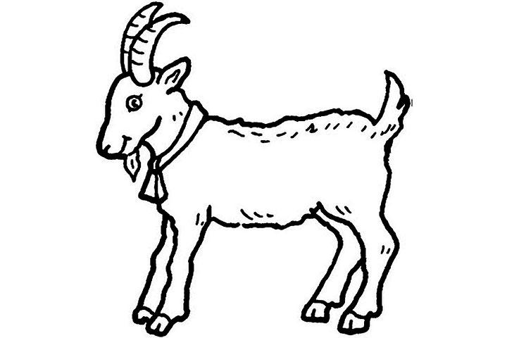 720x480 Pictures Of Animals Coloring Kids Goat The Farm Animal Coloring Pages