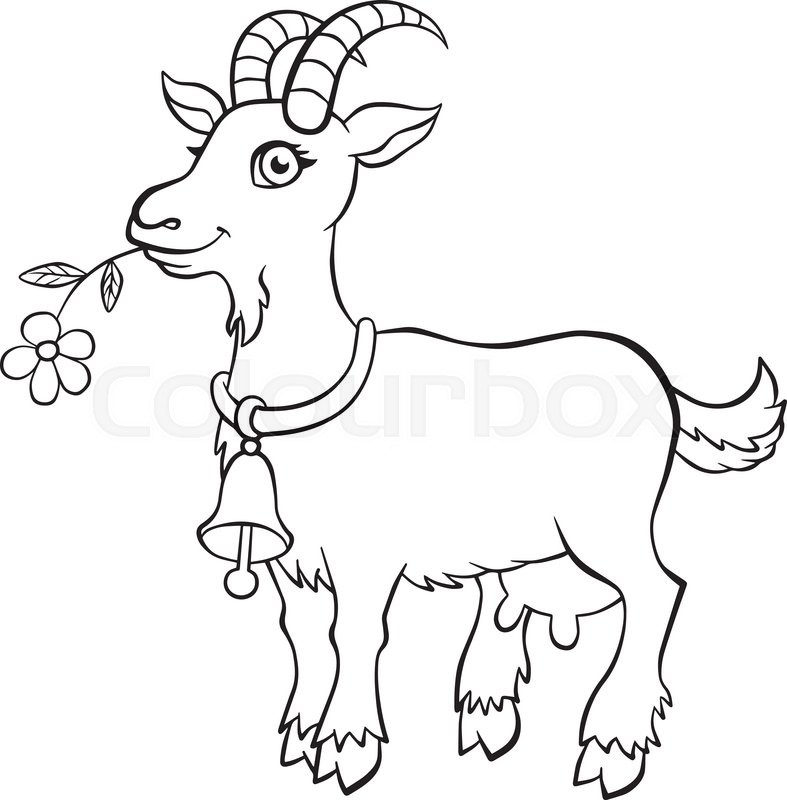 787x800 Coloring Pages.nimals. Little Cute Goat Standsnd Holds