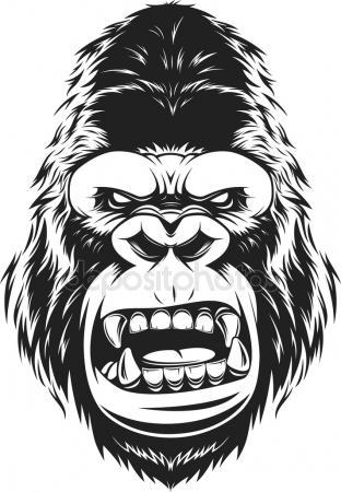312x450 Funny Gorilla Head Stock Vector Andrey Makurin
