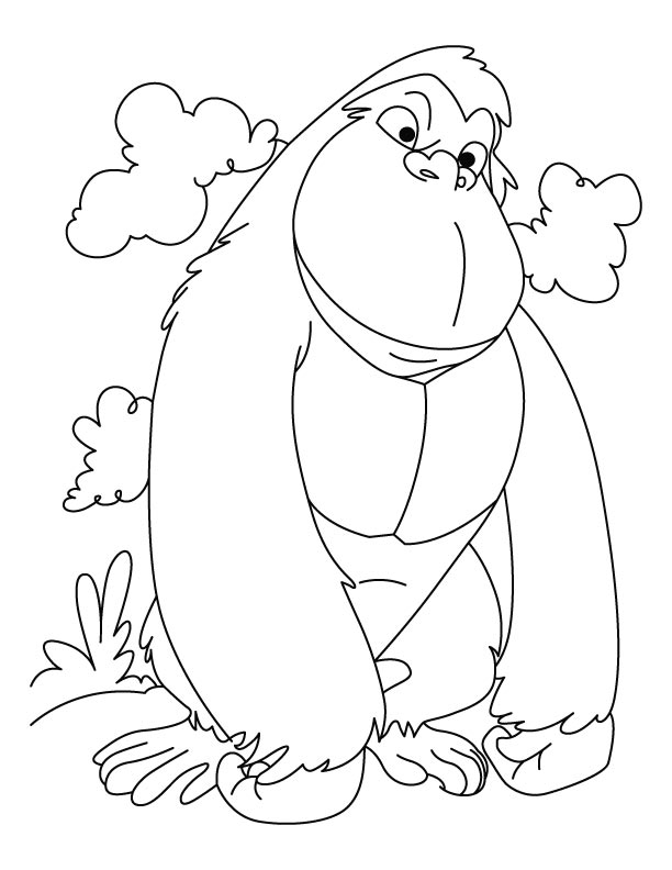 612x792 Amusing Gorilla Coloring Pages 73 For Your Line Drawings