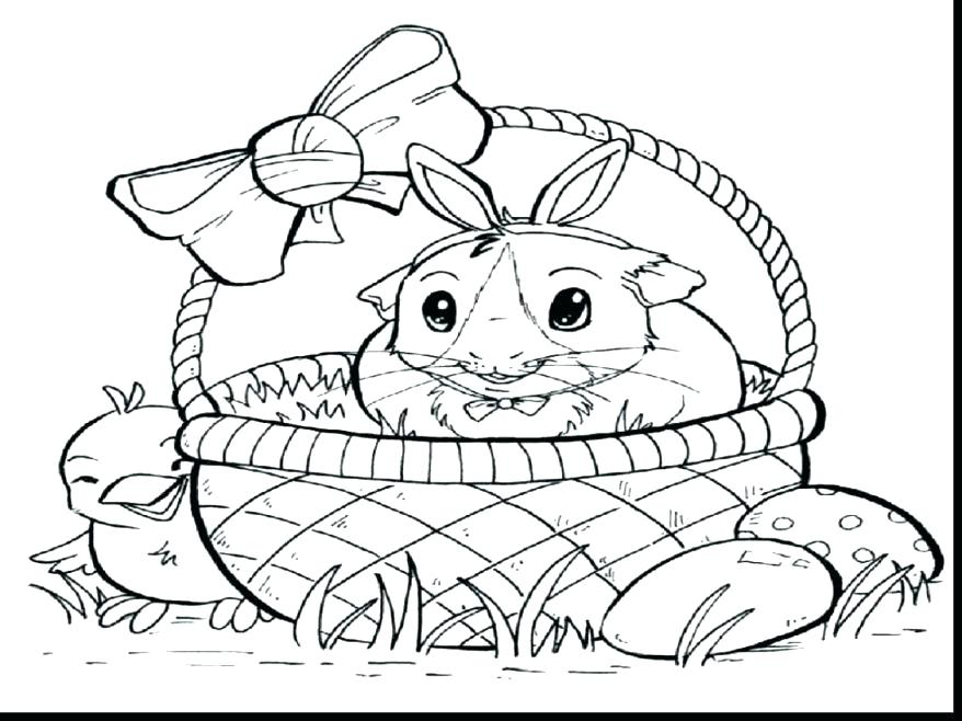 878x658 A Cute Sandy The Hamster Coloring Pages Baby Guinea Pigs Pig