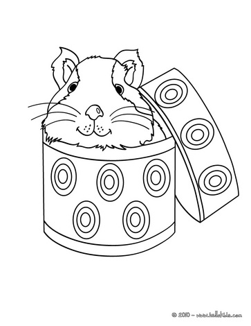 363x470 Guinea Pig In A Box Coloring Page Tennie Box