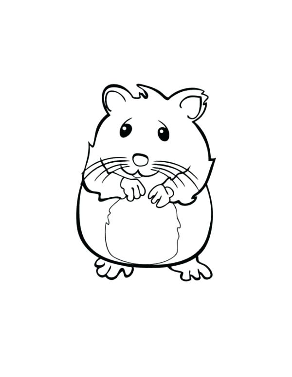 600x776 Baby Pig Coloring Pages Coloring Pages Of Guinea Pigs Cute Hamster