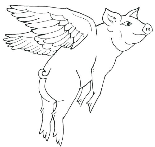 500x473 Baby Pig Coloring Pages New Pigs Coloring Pages Image Baby Pig