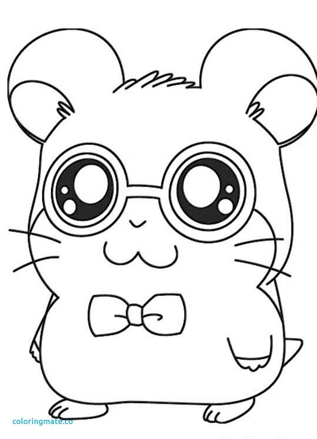 Cute Hamster Drawing