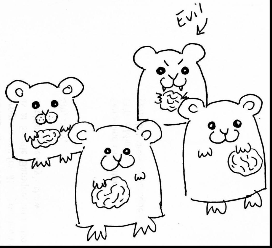 1126x1027 fantastic cute hamster coloring pages with hamster coloring pages