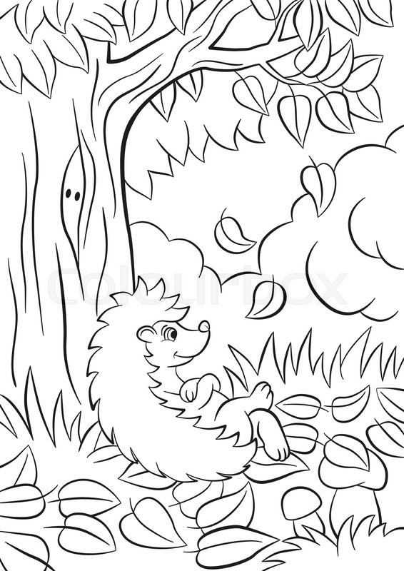 566x800 Coloring Pages. Little Cute Kind Hedgehog Sits Near The Tree. Its
